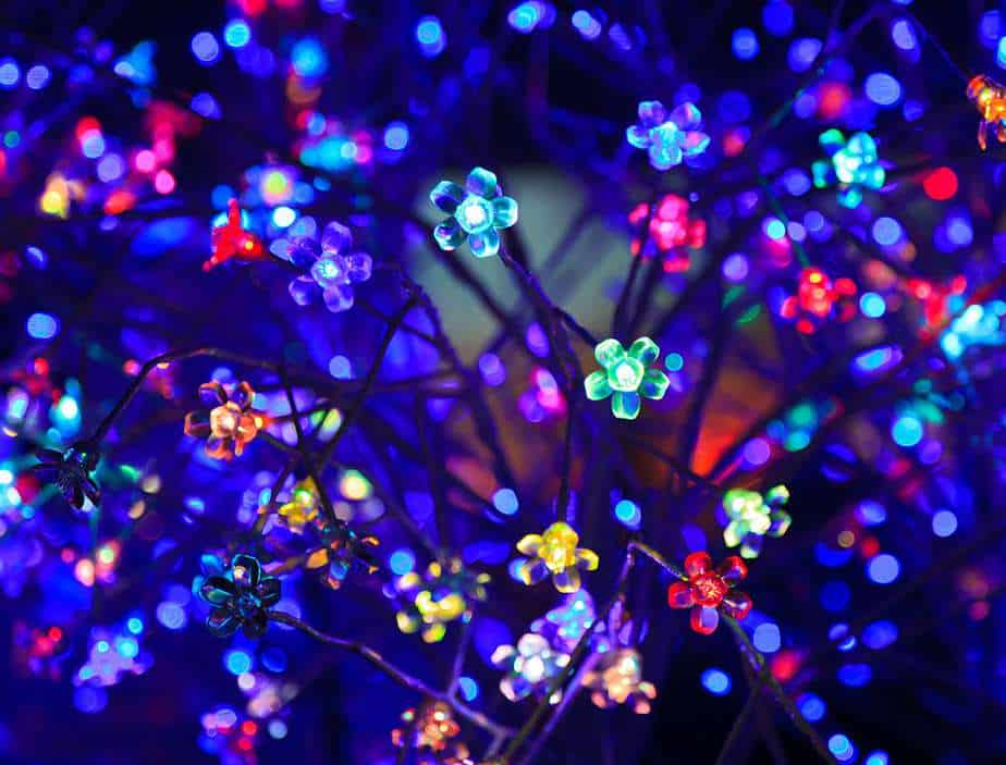 Colorful fun flower LEDs