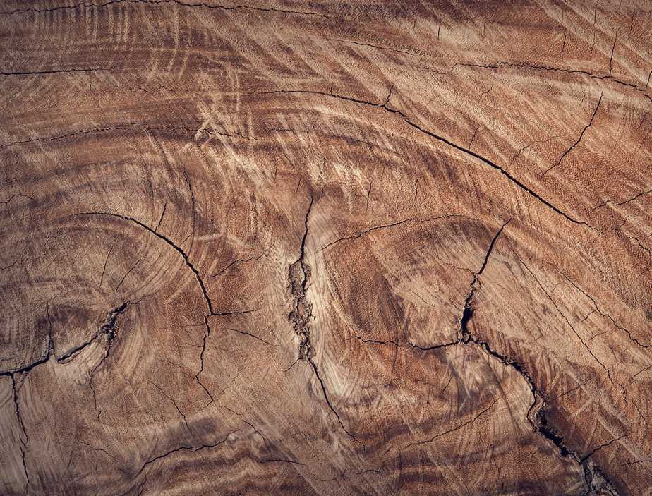 Damaged cracked wood