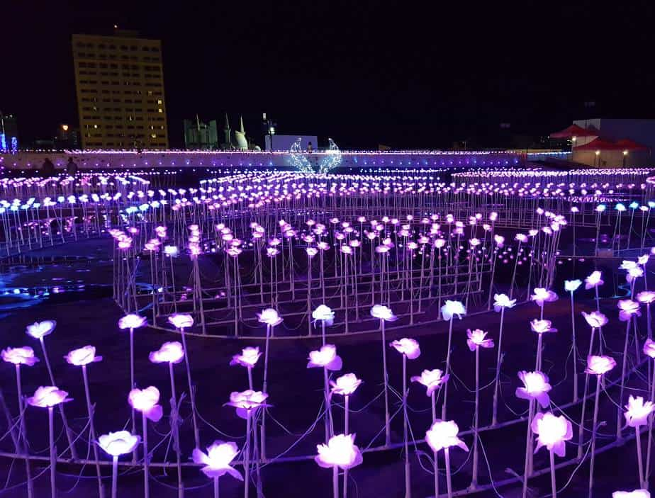 LED beautiful landscape with flowers