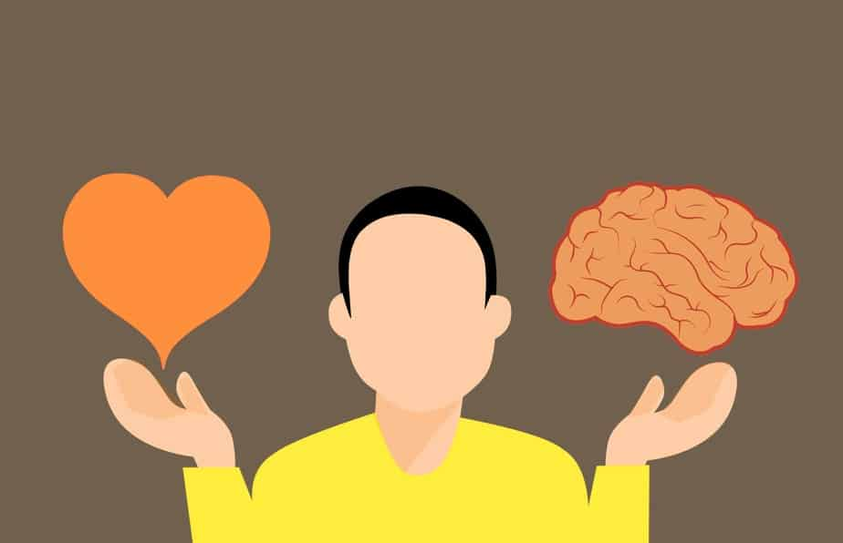 Decision to use emotions versus logic - most profitable skills to learn